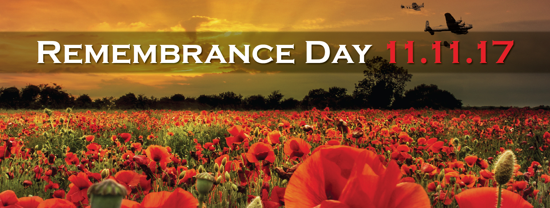 rememberance day Memorial day history three years after the civil war ended, on may 5, 1868, the head of an organization of union veterans the grand army of the republic (gar) established decoration day as a time for the nation to decorate the graves of the war dead with flowers.