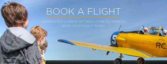 Poster for - Book a Flight
