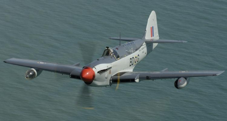 Photo of Fairey Firefly Mk. VI